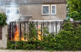 Veilig onkruid wegbranden