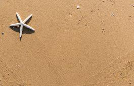 Veilig het strand op!
